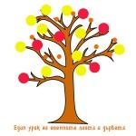 Един урок за есенните листа и дървета.