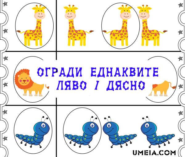 Top_circle_same