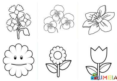 Цветя за оцветяване